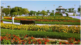 fiori al paek fotografie stock