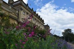 Fiori alla Camera di Harewood, Leeds, West Yorkshire, Regno Unito Fotografia Stock