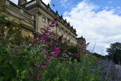 Fiori alla Camera di Harewood, Leeds, West Yorkshire, Regno Unito Fotografia Stock Libera da Diritti
