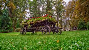 Fiori allegri in un carretto di legno del vaso da fiori immagine stock libera da diritti