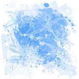 fiori & fiocchi di neve Fotografia Stock Libera da Diritti