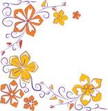 Fiori arancioni royalty illustrazione gratis