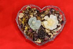 Fiori aromatici in un vaso la forma di cuore Fondo di giorno del ` s del biglietto di S Fotografia Stock Libera da Diritti
