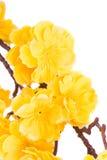 Fiori artificiali gialli Fotografia Stock Libera da Diritti
