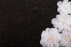 Fiori artificiali su fondo nero Fotografia Stock Libera da Diritti