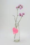 Fiori asciutti nella bottiglia di vetro adorabile Fotografia Stock Libera da Diritti