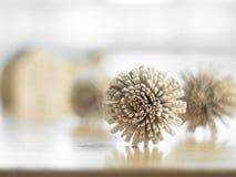 Fiori asciutti sulla tavola di legno. Fotografia Stock