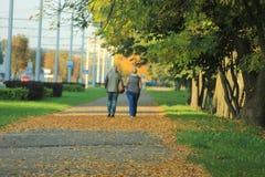 Fiori in autunno Fotografia Stock Libera da Diritti
