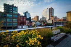 Fiori, banco e vista delle costruzioni in Chelsea dall'alta L Immagini Stock