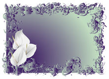 Fiori bianchi illustrazione di stock