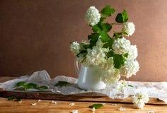 Fiori bianchi dei ramoscelli di viburno del mazzo di natura morta Fotografia Stock