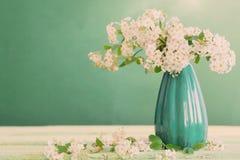 Fiori bianchi della molla su fondo verde Fotografia Stock Libera da Diritti