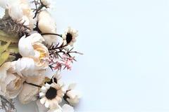 Fiori bianchi della sorgente su una filiale di albero Fotografia Stock Libera da Diritti