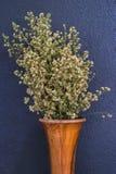 Fiori bianchi della taglierina in vaso di legno Fotografia Stock Libera da Diritti