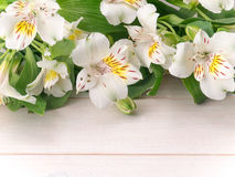 Fiori bianchi di alstroemeria sulle plance di legno Fotografia Stock Libera da Diritti