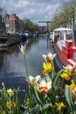 Fiori bianchi e gialli sul canale a Amsterdam con le barche, le costruzioni ed acqua blu come fondo Fotografia Stock