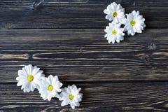 Fiori bianchi su fondo di legno strutturato con il posto per testo Fotografia Stock Libera da Diritti