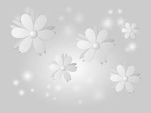 Fiori bianchi su fondo grigio Immagini Stock Libere da Diritti