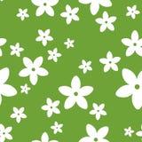 Fiori bianchi su verde. Illustrazione di vettore. Fotografie Stock Libere da Diritti