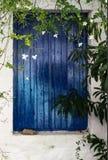 Fiori bianchi sulla vite che appende davanti alla finestra con le imposte blu nella costruzione bianca dello stucco Fotografia Stock Libera da Diritti
