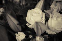 Fiori in bianco e nero di nozze fotografia stock