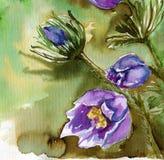 Fiori blu royalty illustrazione gratis
