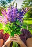 Fiori blu dei lupini fotografia stock libera da diritti