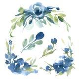 Fiori blu dell'acquerello con erba grigia su fondo bianco per Fotografie Stock