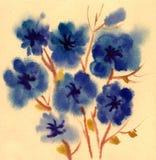 Fiori blu verniciati in acquerello Immagine Stock Libera da Diritti