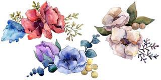 Fiori botanici floreali del mazzo Insieme dell'illustrazione del fondo dell'acquerello Elemento isolato dell'illustrazione dei ma royalty illustrazione gratis