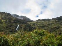 Fiori, cascata e natura nelle montagne Fotografia Stock Libera da Diritti