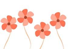 Fiori colorati colore rosa illustrazione di stock