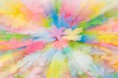 Fiori colorati sorgente Immagine Stock