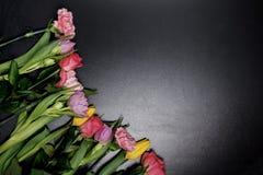 Fiori colorati su un fondo nero L'ottavo marzo, Immagini Stock