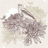 Fiori con l'illustrazione dell'uccello Fotografia Stock