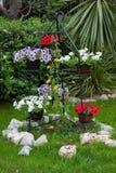 Fiori con le pietre nel giardino di estate fotografie stock