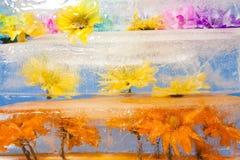 Fiori congelati nel blocco di ghiaccio Fotografie Stock