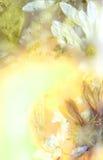 Fiori conservati quattro Fotografia Stock