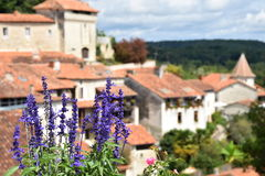 Fiori contro il villaggio charing nel sud della Francia immagini stock