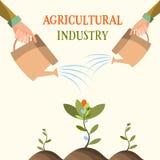 Fiori crescenti, agricoltura, coltivante, giardino Illustrazione di vettore Immagine Stock