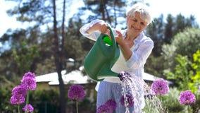 Fiori d'innaffiatura della donna senior al giardino di estate archivi video