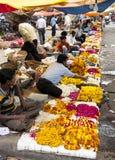 Fiori da vendere, Jaipur, India Immagini Stock Libere da Diritti