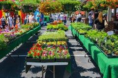 Fiori da vendere a Vinton Farmers Market fotografia stock