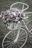 Fiori decorativi della bicicletta Fotografia Stock