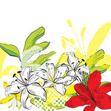 Fiori decorativi di estate Fotografie Stock
