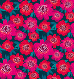 Fiori decorativi rosa e rossi luminosi della camelia Fotografie Stock Libere da Diritti