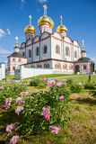 Fiori decorativi sulla cattedrale del fondo del presupposto Fotografia Stock Libera da Diritti