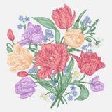 Fiori dei tulipani Fotografie Stock Libere da Diritti