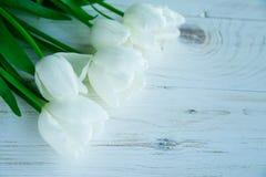 Fiori dei tulpes della primavera su fondo di legno bianco Immagine Stock Libera da Diritti