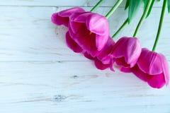 Fiori dei tulpes della primavera su fondo di legno bianco Fotografia Stock Libera da Diritti